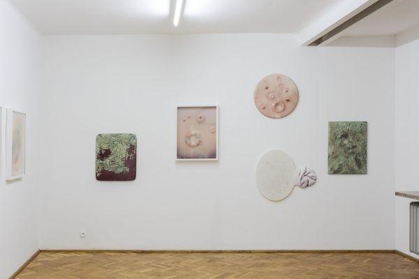 Paweł Matyszewski - Rozkosze i krzywdy